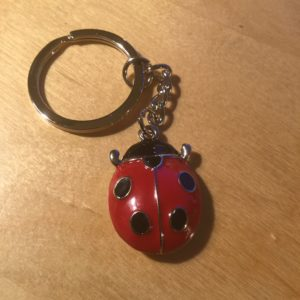 Lady Bug Key Charm CH221 – Retail Price Shown Below